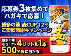 博多の華CP麦12 トップ