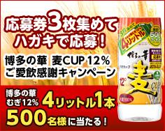 博多の華 麦CUP キャンペーン_201908