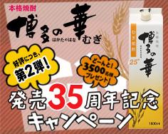 博多の華35周年 第2弾
