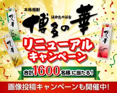 博多の華CP トップ
