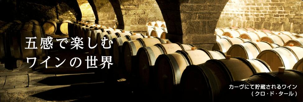 五感で楽しむワインの世界 カーヴにて貯蔵されるワイン(クロ・ド・タール)
