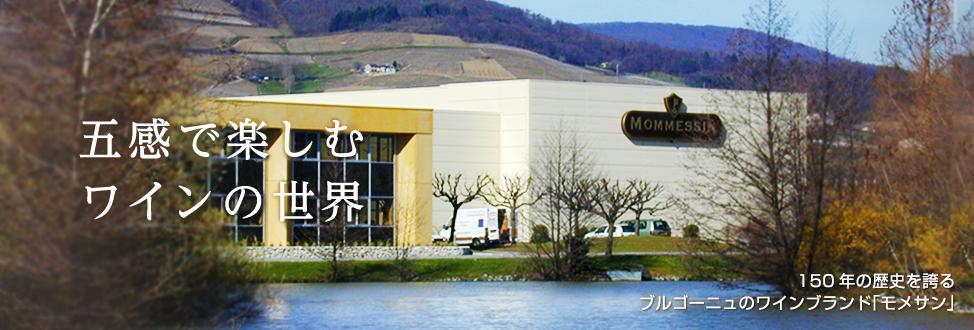 五感で楽しむワインの世界 ブルゴーニュを代表するワイナリーの一つであるモメサン社